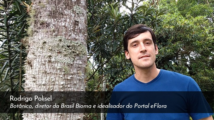 Rodrigo Polisel eFlora