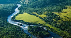 Biomas do Brasil