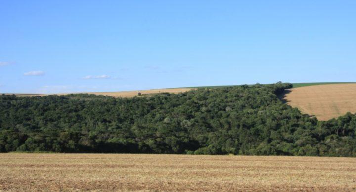 Reserva Legal em Propriedade Rural