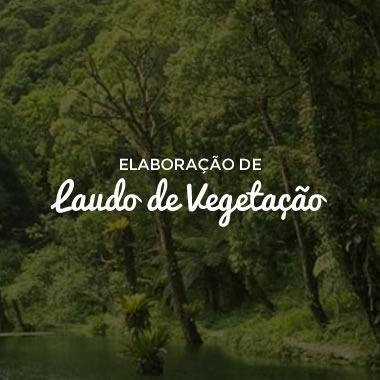 Curso Elaboração de Laudo de Vegetação