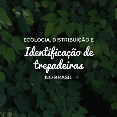 Ecologia, Distribuição e Identificação de Trepadeiras no Brasil