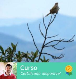 Curso: Analisando a Vegetação em área de Cerrado e Mata Atlântica