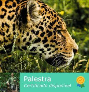 12 dicas de fauna silvestre