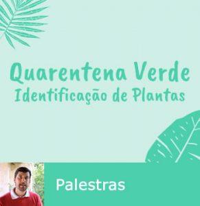 Palestras sobre Identificação de Plantas