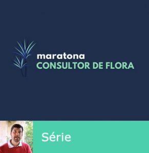 Lives da Maratona do Consultor de Flora